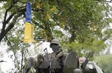 Xung đột ở miền Đông Ukraine: Hơn 2.500 người thiệt mạng