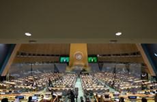 Liên hợp quốc thông qua nghị quyết xóa bỏ hạt nhân do Nhật đề xuất