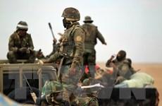 Iraq đẩy mạnh chiến dịch truy quét các tay súng IS