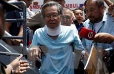 Cựu Tổng thống Peru Fujimori chính thức được tự do sau 12 năm tù giam