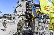 Liên quân do Mỹ đứng đầu lập lực lượng an ninh biên giới tại Syria