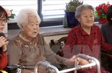 """Nhật Bản phản đối yêu cầu của Hàn Quốc về vấn đề """"phụ nữ mua vui"""""""
