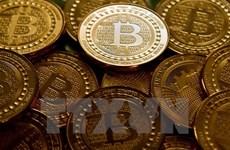 """Các đồng tiền ảo """"rơi tự do,"""" đánh dấu tuần giao dịch ảm đạm nhất"""