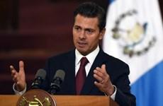 Tổng thống Mexico tái cam kết tăng cường quan hệ với Mỹ