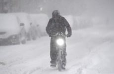 Bão tuyết đổ bộ vào vùng Trung Tây nước Mỹ, các trường học đóng cửa