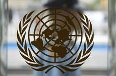 Liên hợp quốc ban hành loạt biện pháp chống quấy rối tình dục