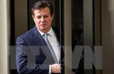 Cựu Giám đốc chiến dịch tranh cử của ông Trump khẳng định vô tội