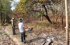 Cháy rừng phòng hộ ở Yên Bái, chưa thống kê được thiệt hại