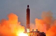 Quan chức Nga: Triều Tiên không phải đối tượng được Nga bảo vệ