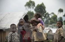 2 triệu trẻ em ở Cộng hòa Dân chủ Congo có nguy cơ chết đói