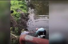 [Video] Cụ ông 90 nhảy xuống sông cứu cậu bé 19 tháng tuổi