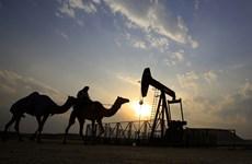 Bahrain phát hiện mỏ dầu và khí đốt lớn nhất trong lịch sử