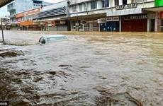 Bão Josie gây thiệt hại nặng tại Fiji, ít nhất 4 người thiệt mạng