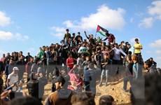 Liên đoàn Arab sẽ tổ chức họp khẩn về vụ tấn công của Israel tại Gaza
