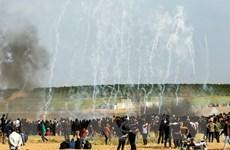 Pháp kêu gọi Israel kiềm chế liên quan đến tình hình ở Gaza