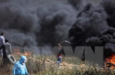 Tòa án Hình sự Quốc tế: Tội ác chiến tranh ở Gaza có thể bị truy tố