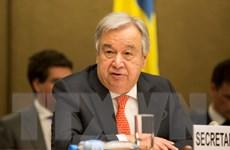 """Tổng Thư ký Liên hợp quốc: Hội đồng Bảo an """"bế tắc"""" trong vấn đề Syria"""
