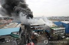 Hỏa hoạn tại nhà máy ở Hàn Quốc, nguy cơ rò rỉ hóa chất