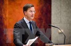 Ha Lan khẳng định không tham gia tấn công quân sự tại Syria