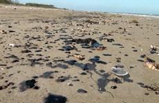 Xuất hiện nhiều vết dầu loang vón cục trôi dạt vào bãi biển ở Bến Tre