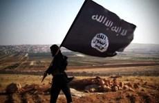 EU, Mỹ phối hợp tấn công các kênh truyền thông của IS