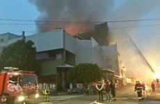 Có 161 lao động Việt làm việc tại công ty Đài Loan bị hỏa hoạn