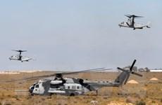 Nghị sỹ Mỹ đề xuất điều tra các vụ rơi máy bay quân sự