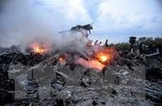 """Nga tuyên bố không chấp nhận """"kết luận vô căn cứ"""" về vụ MH17"""