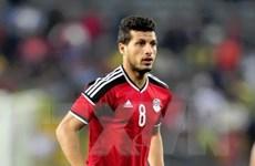 Tiền vệ Tarek Hamed tiết lộ tham vọng lớn của đội tuyển Ai Cập