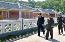 Chuyên gia: Điều khác thường liên quan đến kinh tế Triều Tiên