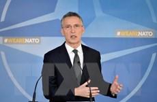 Bảy nước châu Âu sẽ hoàn thành cam kết tài chính NATO