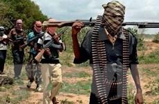 Nigeria tổ chức nhiều chiến dịch, bắt giữ 22 tay súng Boko Haram