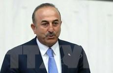 Thổ Nhĩ Kỳ tìm cách ngăn ảnh hưởng từ lệnh trừng phạt của Mỹ với Iran