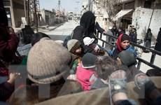 Nga: Tổ chức Mũ bảo hiểm trắng lan truyền thông tin giả mạo tại Syria