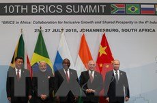 BRICS tìm được tiếng nói chung tại hội nghị thượng đỉnh ở Nam Phi