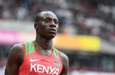 Kenya mong muốn sự công tâm từ Hiệp hội Điền kinh quốc tế