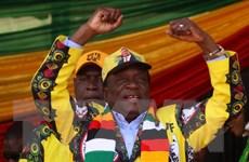ZEC công bố kết quả chính thức của cuộc bầu cử Zimbabwe