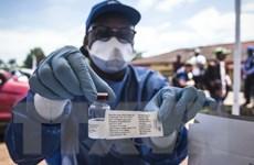 Cộng hòa Dân chủ Congo tuyên bố dịch Ebola mới tại tỉnh miền Đông
