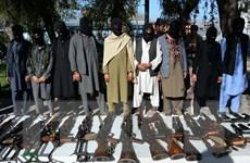 NATO muốn gây sức ép buộc Taliban ngồi vào bàn đám phán