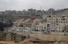 Palestine lên án việc Israel xây dựng 650 khu định cư ở Bờ Tây