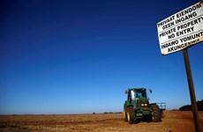 Chính phủ Nam Phi gửi lời xin lỗi đến những nông dân da trắng