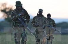 Kenya: 15 binh sỹ thương vong trong vụ nổ bom ven đường