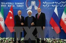 Syria: Ông Putin hy vọng phiến quân tại Idlib sẽ hạ vũ khí đầu hàng