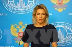 Nga tái khẳng định sự cần thiết diệt trừ khủng bố tại Syria