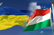 Ukraine buộc một nhà ngoại giao Hungary rời khỏi trong vòng 72 giờ