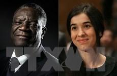 Lãnh đạo thế giới chào đón 2 chủ nhân mới của giải Nobel Hòa bình