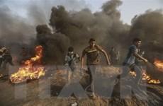 Các cuộc đụng độ ở Dải Gaza khiến nhiều người thương vong