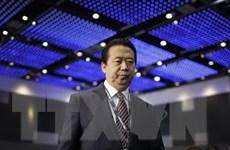 [Video] Interpol sẽ bổ nhiệm chủ tịch mới thay ông Mạnh Hoành Vĩ