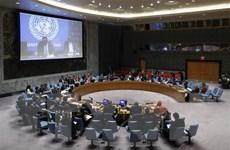 Đánh mất vai trò trong xử lý các thách thức, Liên hợp quốc đã lạc hậu?