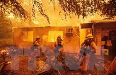 Cháy rừng thiêu rụi hơn 7.000 ngôi nhà và tòa nhà ở bang California